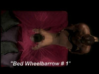 Bed Wheelbarrow 1